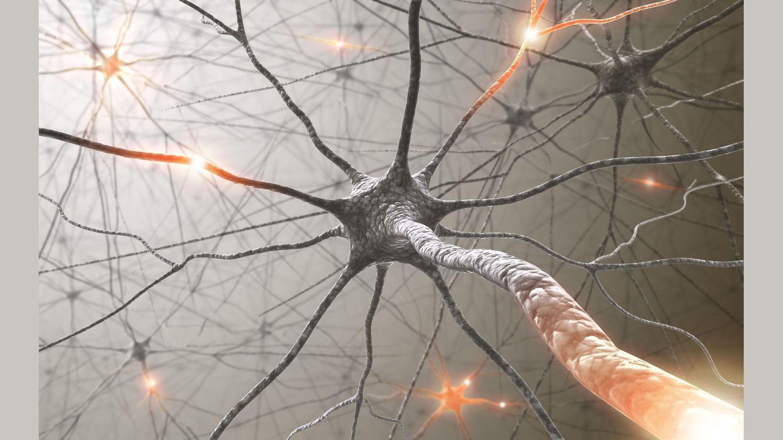 Neuroplasticity and our ability to mentally adapt